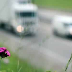 ecologische footprint auto's onderzoek
