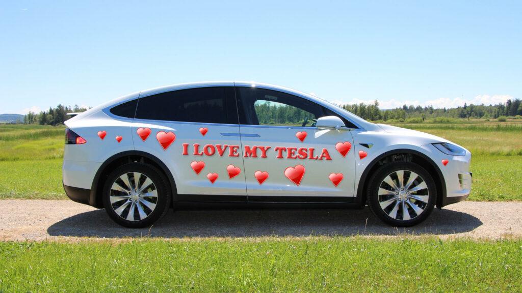 Nederlanders tevreden verliefd elektrische auto