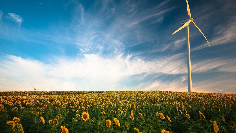 groene energie energiecoöperatie