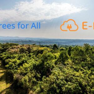 E-Flux donateur Trees for All